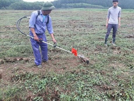 Máy xới đất, xạc cỏ cầm tay đeo vai Honda GX35 (tặng 10 món phụ kiện)