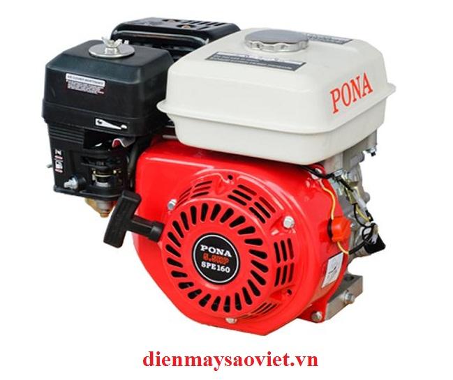 Động cơ xăng Pona New 5.5HP